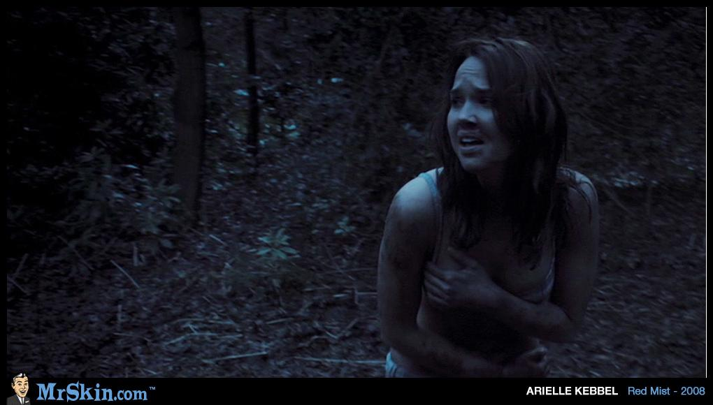 Arielle Kebbel Naked Pictures 94