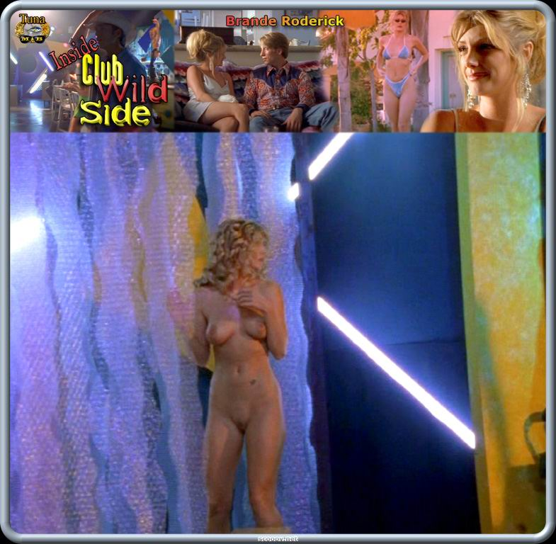 Free preview of brande roderick naked in starsky and hutch