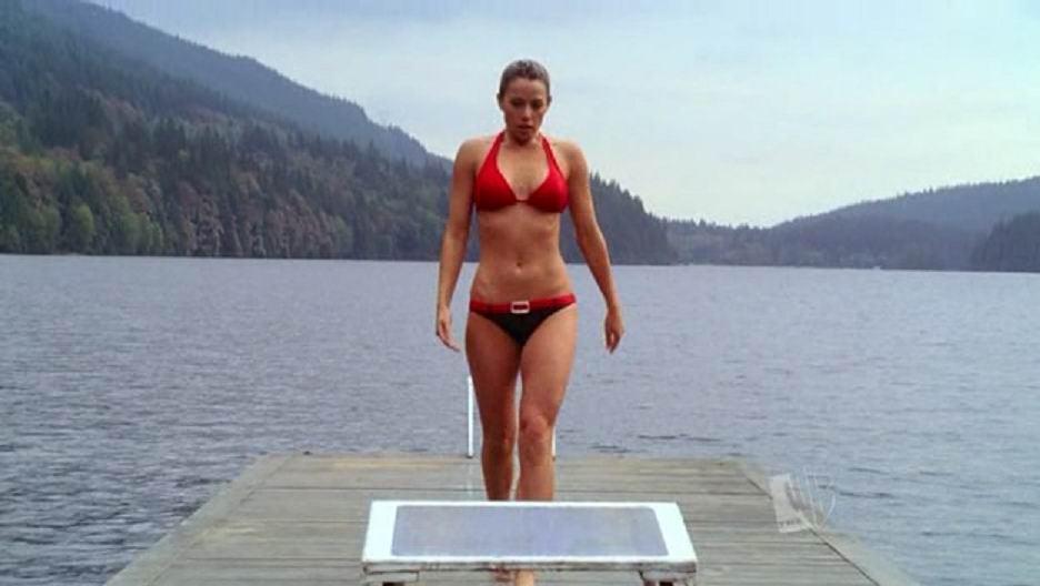 Erica durance bikini excellent answer