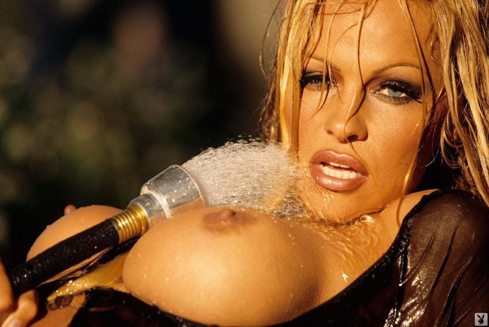 Pamela anderson erotic striptease