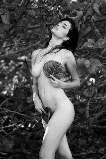 Lauren Summer Desnuda [2732x4096] [1393.39 kb]