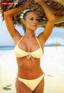 Nikki Visser en Bikini [668x960] [108.41 kb]