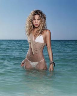 Shakira [963x1200] [115.41 kb]