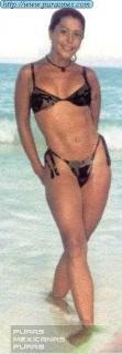 Alejandra Guzmán en Bikini [198x567] [20.64 kb]
