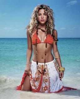 Shakira [964x1200] [148.14 kb]