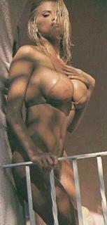 Anna Nicole Smith [231x482] [20.08 kb]