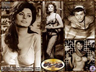 Sophia Loren [1024x768] [162.26 kb]