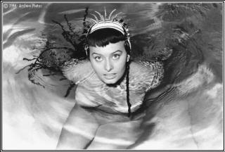 Sophia Loren [622x420] [44.23 kb]