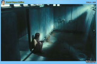 Sarah Wayne Callies [1176x775] [68.96 kb]