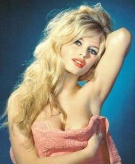 Brigitte Bardot [382x464] [28.93 kb]