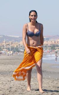 Inés Sastre en Bikini [500x800] [57.21 kb]