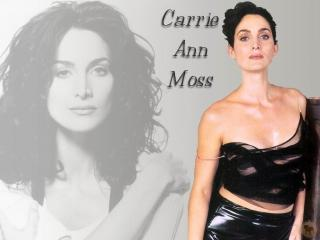 Carrie-Anne Moss [1024x768] [77.25 kb]