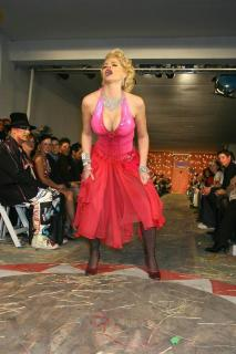 Anna Nicole Smith [533x800] [74.41 kb]
