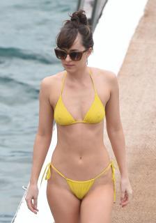 Dakota Johnson en Bikini [2649x3771] [627.54 kb]