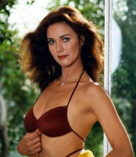 Lynda Carter [365x419] [32.19 kb]