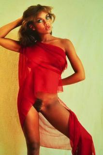 Vanessa Williams Desnuda [529x792] [44.13 kb]