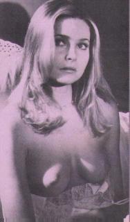 Priscilla Barnes Desnuda [282x480] [26.63 kb]