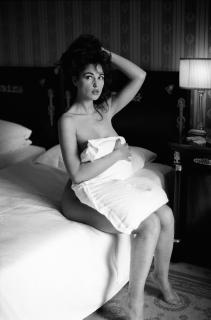 Monica Bellucci [2904x4392] [2162.35 kb]