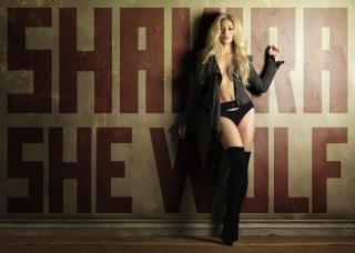 Shakira [3900x2786] [1137.65 kb]