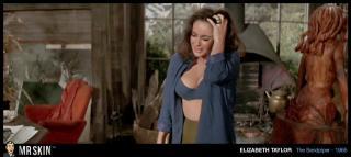 Elizabeth Taylor [1020x456] [54.36 kb]