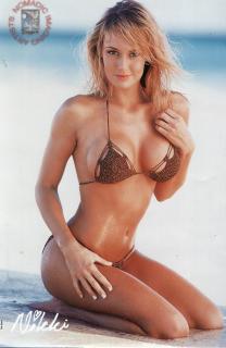 Nikki Visser en Bikini [660x1013] [97.26 kb]
