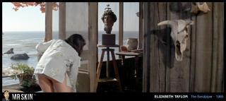 Elizabeth Taylor [1020x456] [56.18 kb]